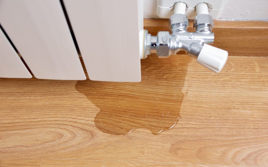 The Pipes Burst in my Home – Now What?!
